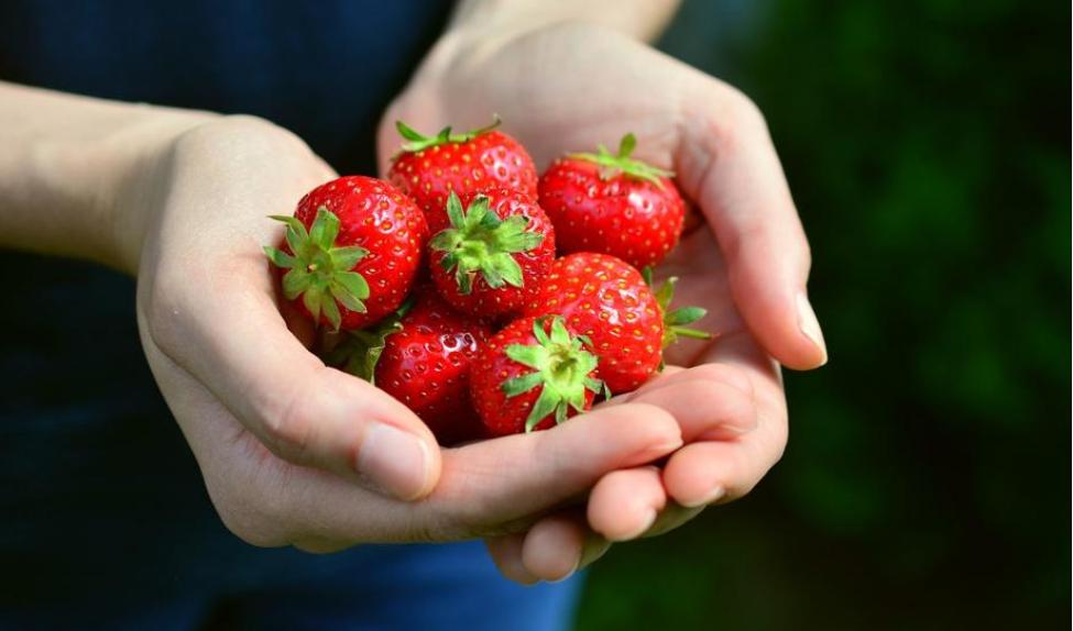 Diario del confinamiento. Ana Frank y las fresas.